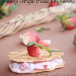 Max & Rubys Frozen Berry Waffle Cookie |kothiyavunu.com
