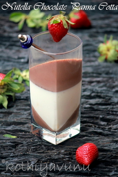 Nutella Chocolate Vanilla Panna Cotta Recipe