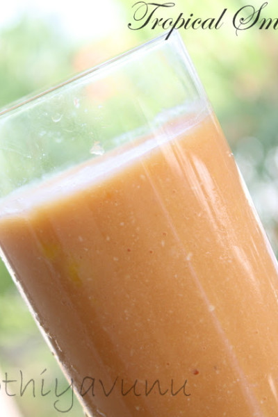 Tropical Smoothie Recipe – Healthy and Delicious!